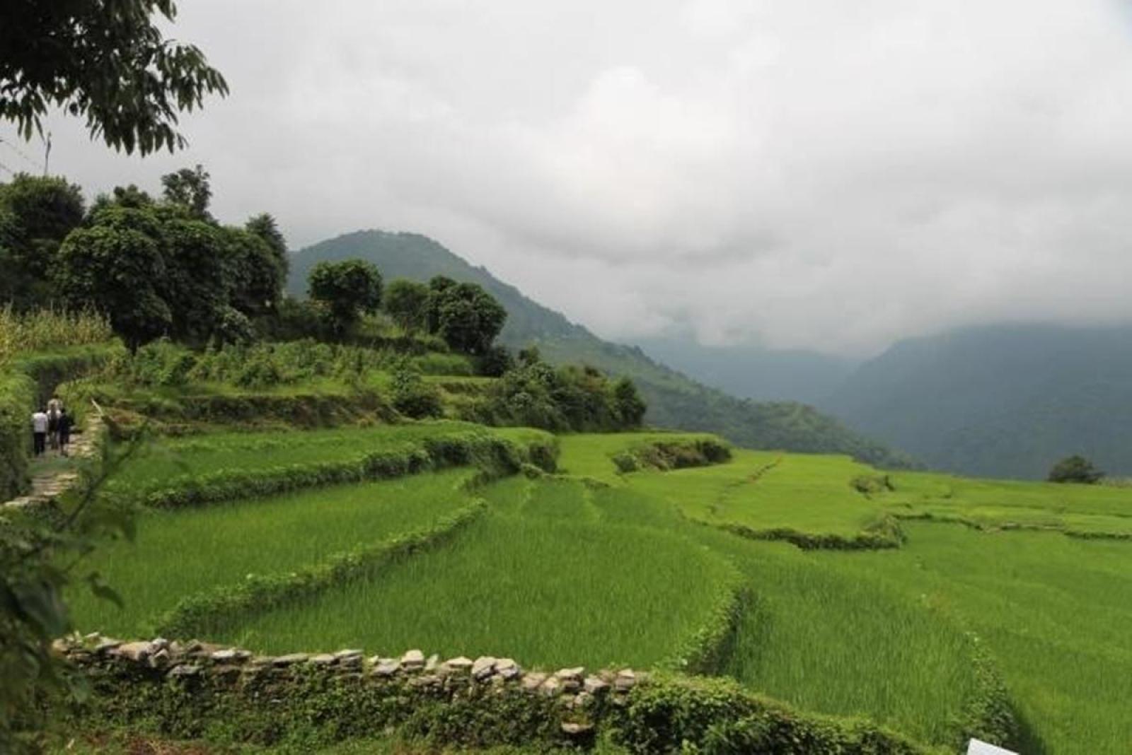 Un paysage sur le projet d'écovolontariat dans les montagnes de l'Himalaya au Népal